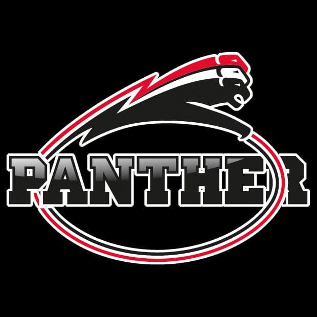 panther-black
