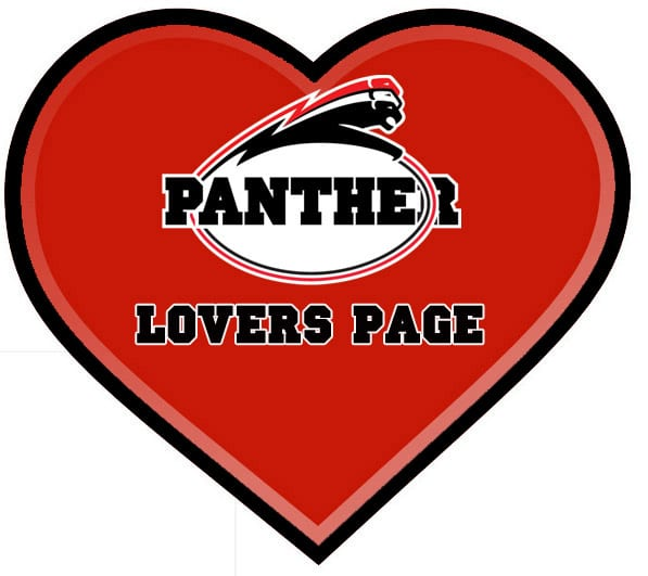 Panther Lovers Page – ein Versuch!